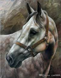 2019 horse head ca artwork unframed modern canvas wall art for home and office decoration oil painting animal painatings frame painting from yjart8888