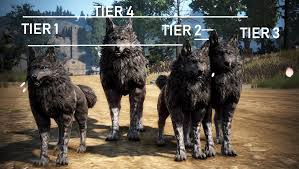 Dire Wolf Size Chart Pet Sizes Wolf Lynx Exchanging Pet Appearance Change