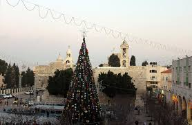 Manger Photograph - Christmas Tree In Manger Square Bethlehem by Munir Alawi