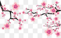 cherry blossom cers clip art sakura