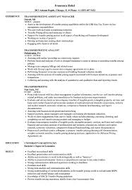 Transfer Resume Sample Transfer Pricing Resume Samples Velvet Jobs 1
