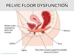 fresh floor spasms on floor 2 with regard to dr hoang integrative pain management floor