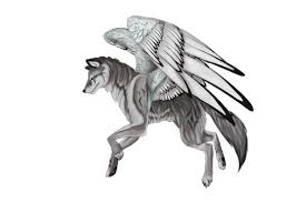 white wolf with wings drawing. Wings Of The Wolves RP Google In White Wolf With Drawing