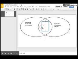 Make A Venn Diagram In Powerpoint Venn Diagram In Google Slides Youtube