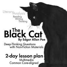 the black cat edgar allan poe analysis sparknotes essay writing  how to write a comparative essay introduction example