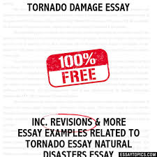 essay about natural disasters natural disasters school a to z what is essay structure human dignity essay the m witch