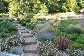 Best 25 No Grass Landscaping Ideas On Pinterest  Hedges Lawn Free Backyard