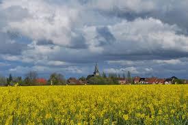 Ville de Bailleul - Les vœux du Steent'je auront lieu ce dimanche 8 janvier  à 12, salle Paul Vannobel. #Bailleul #Steentje #Voeux | Facebook