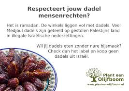 Palestijnse dadels kopen