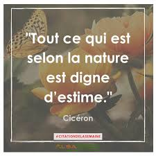 Citation De Cicéron Citation N15 Blog Alsabrico