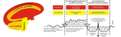 Dr Hamer Disease Chart Pdf The German New Medicine