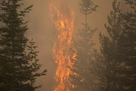 ignited Oregon's mammoth Bootleg fire ...