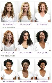 Andre Walker Hair Chart Hair Types Hair Typing Systems And You Aunt Lucys Folk Sense