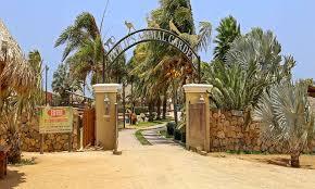 animal garden. A Picture Of The Entrance To Philip\u0027s Animal Garden In Aruba