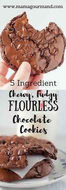 Chewy Chocolate Cookies Chewy Fudgy Flourless Chocolate Cookies Mamagourmand