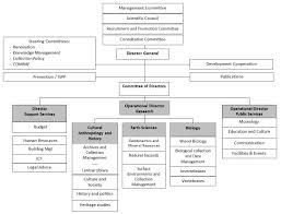 Organizational Chart Sport Museum Related Keywords