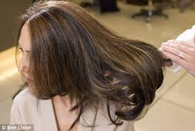 Image result for an indian  lady with grey streaks