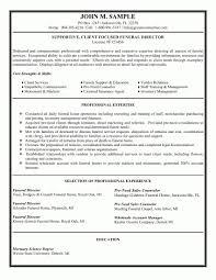 Retail Sales Executive Resume Retail Sales Executive Resume Samples Velvet Jobs Within Sales