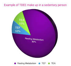 Tdee Calculator Calculate Your Total Daily Energy Expenditure