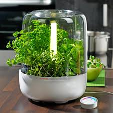 Herb Kitchen Garden Indoor Herb Garden Kitchengarden Basic By Fiskars