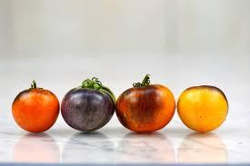 Indigo Apple Tomato is... - Baker Creek Heirloom Seed Company | Facebook