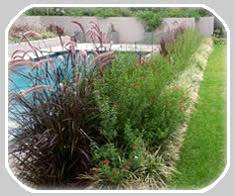 Small Picture Love Landscapes Water wise Succulent Garden Landscaping