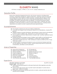Performance Profile Resumes Professional Senior Vice President Client Operations Templates To