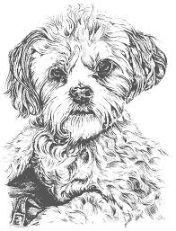 Download coloring pages puppy coloring pages puppy coloring. 12 Perfect Realistic Puppy Coloring Pages Kitten And To Print Cartoon Dog Pictures Oguchionyewu
