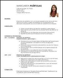 Modelo De Curriculum Vitae Documentado Modelo De Curriculum Vitae