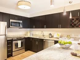 Dark Espresso Kitchen Cabinets Kitchen 56 Dark Espresso Kitchen Cabinets This Look Will Fit