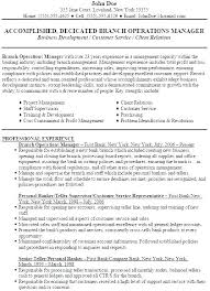 Bank Branch Manager Resume Cool Bank Branch Manager Resume Bank Branch Business Plan Template Bank