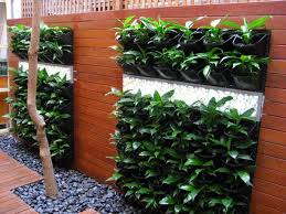 39 vertical gardening ideas systems