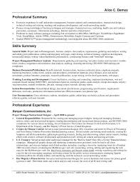 Example Professional Summary For Resume