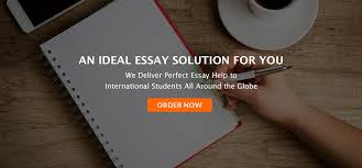 Write My Essay   Get Any Order      Done by EssaySutra com