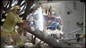 vizio tv 2015. vizio ultra hd tv commercial - fallen tree 2015 vizio tv