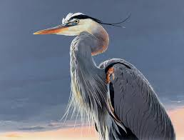 great blue heron painting great blue heron by shawn shea