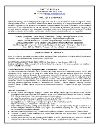 Information Technology Manager Resume Resume For Your Job