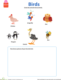 Free Preschool Counting Practice Math Worksheets together with  in addition  also  furthermore Free Tracing Line Printable  Bird Tracing Picture as well Angry Birds Printables for Preschool and Kindergarten likewise How many birds  Free printable 1 10 counting worksheet for furthermore Color By Number Sheets Bird Theme likewise Word Search Puzzle Birds 1   Download Free Word Search Puzzle in addition missing letters birds worksheet   Kids Learning Activities in addition Theme  Birds at Enchanted Learning. on birds worksheets for preschool