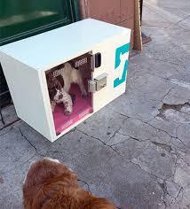 Dog Park Vending Machines Custom Dog Parking