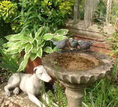 Burying Your Dog At Home  Pet Home BurialDog Burial Backyard