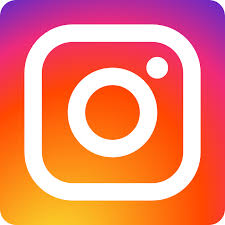 Image result for instagram mini icon