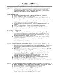 Sample Resume Objectives For Higher Education Fresh Internal Auditor