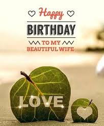 Birthday Quotes For Wife Beauteous 48 Best Birthday Quotes For Wife Quotes Yard
