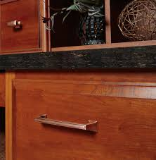 Amerock Decorative Cabinet And Bath Hardware 1902395 Cabinet