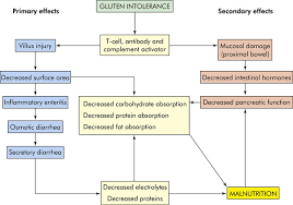 Alterations Of Digestive Function In Children Basicmedical Key