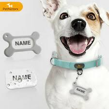 <b>Nylon Personalized Dog Collars</b> for sale   eBay