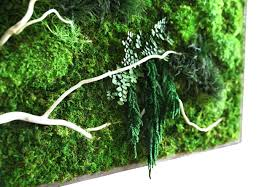 Preserving Tree Branches For Decoration Naturally Beautiful Projects Made With Real Moss