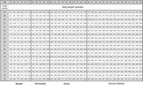 Body Index Chart Bmi Body Mass Index Calculator Motivating Mommy