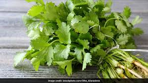 7 Best Medicinal Plants And Their Uses
