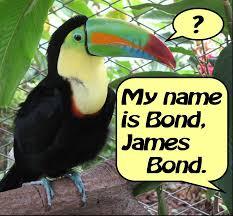 Znalezione obrazy dla zapytania james bond pictures free download